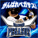 diamondpegasusu-banner_01_s