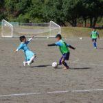 ボルテックスカップ少年サッカー大会の様子